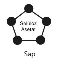 sap-seluloz